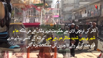 Quetta- Birds Traders Upset Due to Dollar Price.mp4