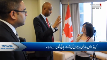 Canada should improve protections for temporary residents amid visa application surge: advocates