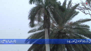 Karachi- Cold winds will continue in Karachi for the next two to three days, Meteorological Department